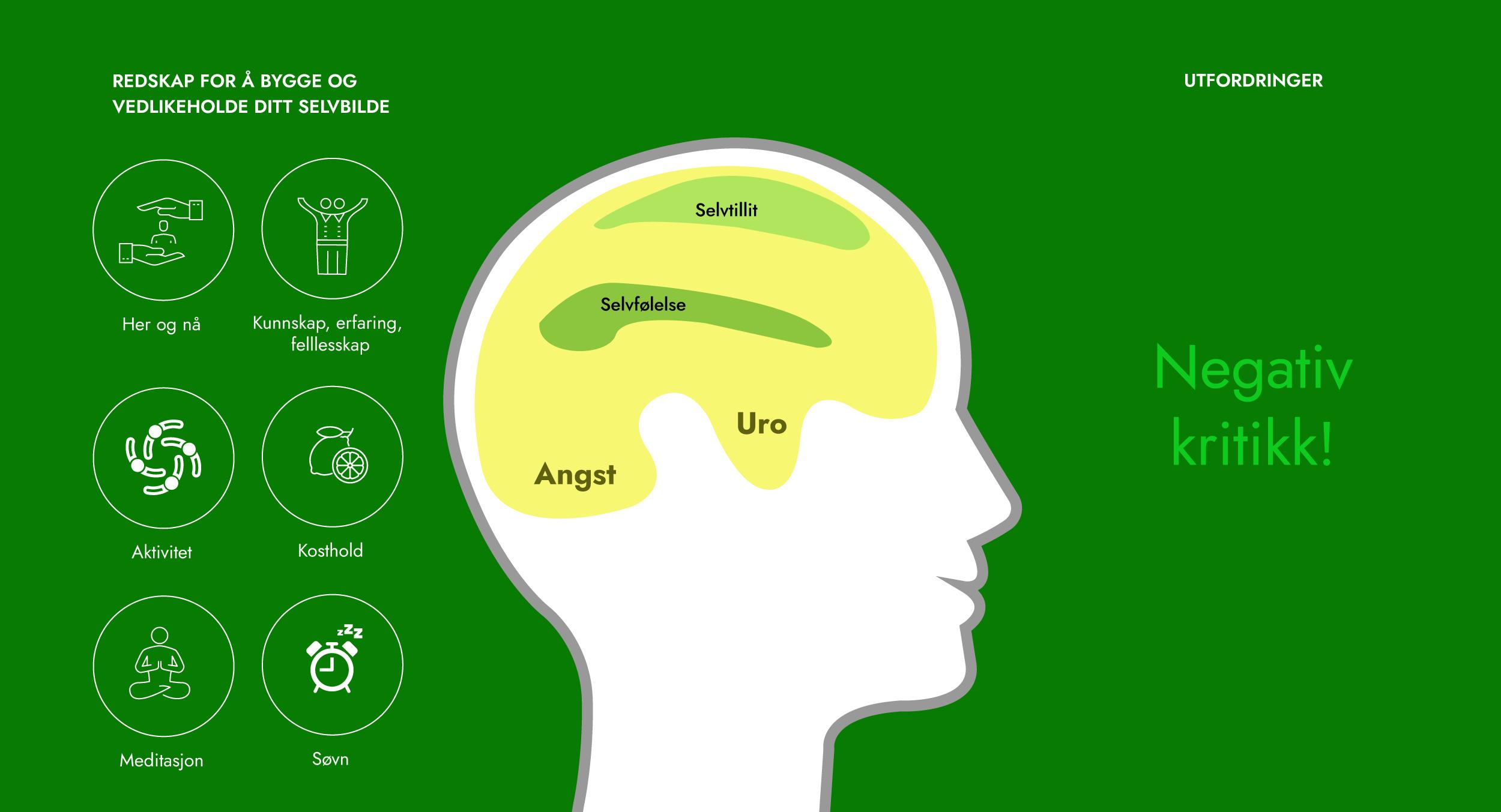Hjernen08