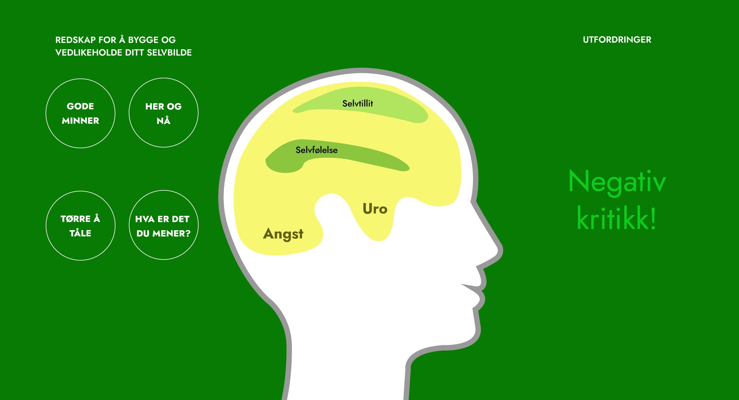 Hjernen09